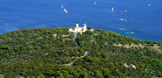 Le Cap Camarat, enclave sauvage dans le golfe de Saint-Tropez
